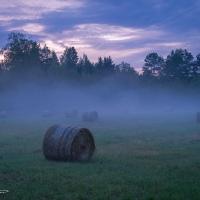 Misty August evening